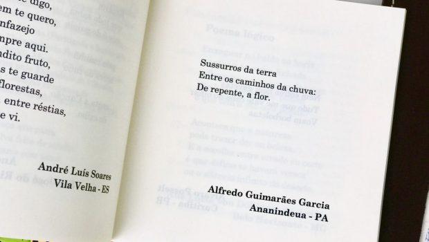 Livro Poesia no Ônibus de Balneário Camboriú tem distribuição gratuita