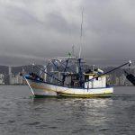 Festa do Pescador iniciou com Arrasto de Camarão